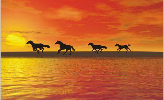 960 Watts Horses Panel